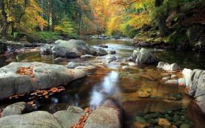 fall-stream